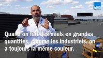 Le_bzzz_de_la_semaine_34