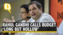 Budget 2020: Rahul Gandhi Calls FM Nirmala Sitharaman's Budget 'Long But Hollow'
