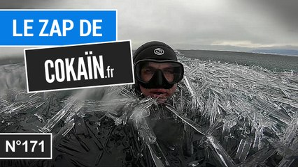 Le Zap de Cokaïn.fr n°171