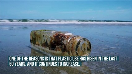 More Plastic Than Fish in the Oceans by 2050?