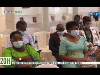 RTG/ Atelier de restitution de l'inventaire du patrimoine culturel et naturel du Gabon au musée national