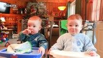 ¡Los bebés trillizos más adorables derretirán tus corazones al 100%!