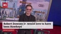 Robert Downey Jr's Other Super Hero Options