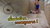 พ่อบ้านถึงกับอึ้ง เมื่อเจอเจ้าหนูฉลาด เปิดฝาท่อระบายน้ำหนีได้ !!