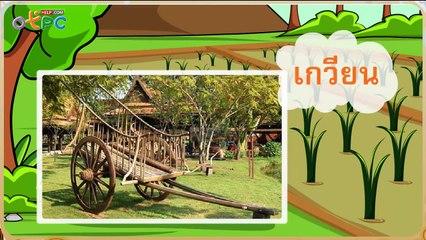สื่อการเรียนการสอน อักษรควบ ร ล ว ป.2 ภาษาไทย