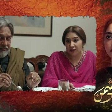 Mera Dil Mera Dushman Episode 5 _ 11th February 2020 _ ARY Digital Drama