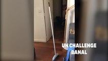 """Le """"Broom Challenge"""", un défi (malheureusement) pas si fou qu'il en a l'air"""