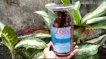 SALE!!! +62 813-2666-1515, Souvenir Untuk Acara 7 Bulanan di Jakarta