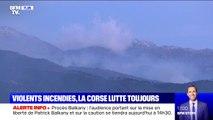 La Corse lutte toujours contre les incendies avec le retour de renforts aériens