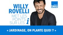 HUMOUR | Jardinage, on plante quoi ? Willy Rovelli met les points sur les i