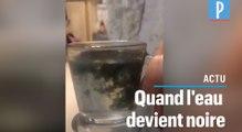 Vidéo virale sur les pesticides dans l'eau :  pourquoi l'électrolyse ne prouve rien