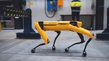 Dieser vierbeinige Roboter arbeitet auf einer Ölplattform