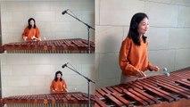 Dance Monkey - Tones and I - Marimba Cover