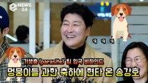 '기생충'(parasite)팀   비하인드, 멍뭉이들 과한(?) 축하에 현타 온 송강호 '죄송합니다..핵귀욤'