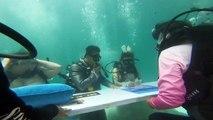 زواج تحت الماء في تايلاند