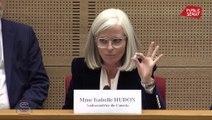 CETA : « L'année dernière, les Français ont consommé 250 fois plus de Doliprane que de bœuf canadien », tente de rassurer l'ambassadrice du Canada en France
