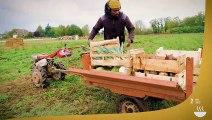 #ODD2 - Initiatives en région Centre-Val de Loire pour atteindre l'ODD2 : « sécurité alimentaire et agriculture durable »