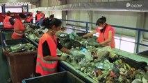 Gestion des déchets : la Roumanie, cancre de l'Europe