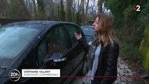 Indre-et-Loire : des dizaines de milliers d'étourneaux vivent dans son jardin