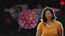 What is coronavirus? TNM Health Explainer