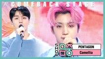 [Comeback Stage] Pentagon -Camellia, 펜타곤 - 동백꽃 Show Music core 20200215