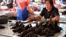 La chauve-souris toujours au menu en Indonésie malgré le coronavirus