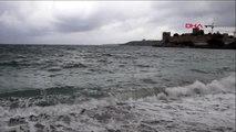 Muğla-soğuk havaya aldırmadan denize girip poşete dolanan martıyı kurtardı
