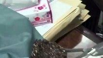 Voici à quoi ressemble le nid de son araignée trapdoor... Impressionnant