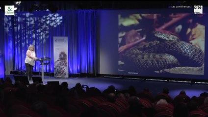 Conférence de Françoise Serre Collet : Fascinants serpents