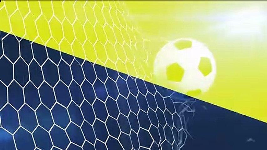 Resumen partido entre Toulouse y Nice Jornada 25 Ligue 1
