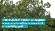 Après Ciara et Dennis, voici Ellen: ça va encore souffler le week-end prochain en Belgique