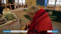 Municipales : à Autun, l'écologie s'impose dans la campagne