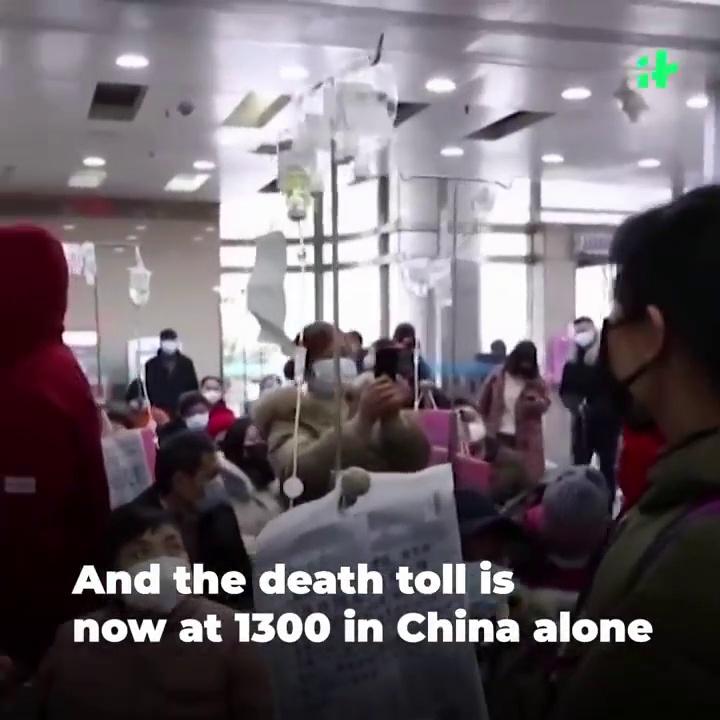 Wuhan Coronavirus Update_ Heartbreaking Video Of Chinese Couple Infected With Coronavirus Is Viral