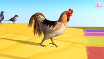 Learn Colors With Animal - Learn Colors Learn Animals Goose Rooster Dove Duck Sparrows with Water colorful for Children