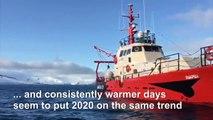 Rising temperature trend is accentuated in Antarctica: researchers