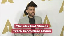 The Weeknd Teases Album