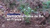 Le journal - 18/02/2020 - ECOLOGIE Une centrale biomasse pour l'ouest tourangeau