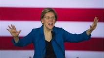 Warren Describes Bloomberg: 'Egomaniac Billionaire'
