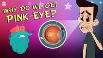 What Causes Conjunctivitis? | CONJUNCTIVITIS | Pink-Eye | The Dr Binocs Show | Peekaboo Kidz