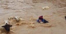 En Angleterre, une agricultrice se transforme en super-héroïne et sauve des moutons piégés dans la tempête Dennis