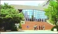 [映画] 大阪やくざ戦争・報復かえし 恋愛映画フル2020 Ep1