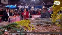 Salon ouvert - l'émission spéciale pour le Salon international de l'Agriculture 2020