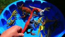 alioop - Dinosaurs for kids, Dinosaurs Learn Names, Jurassic World Dinosaur Educational Video