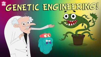 GENETIC ENGINEERING   What Is GENETIC Engineering?   Genetics   The Dr Binocs Show   Peekaboo Kidz