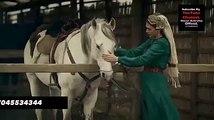 Dirilis season 1 Episode 12 Turkish Drama in Urdu & Hindi