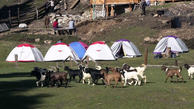 Fairy Meadows & Nanga Parbat Base Camp, Pakistan in 4K Ultra HD