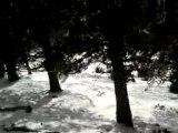 Etoile des neiges (Mehdi & Emil)