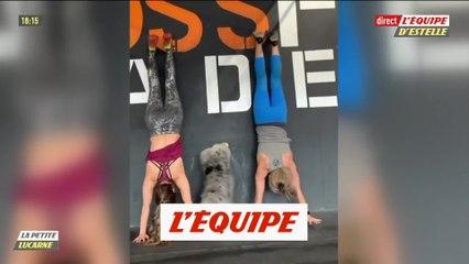 La petite lucarne de Pierre-Antoine Damecour du 26 février 2020 - Foot - EDE