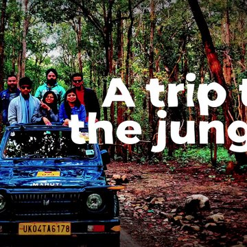 Algoworks Rip-Roaring Party at the Jim Corbett National Park!