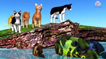 Learn Colors Animals with Baby Cat and Fish Cartoon Rhymes for Children